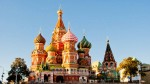 In Russia, a Mosca terrore per i piccioni zombie che piombano dal cielo