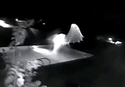 Ufo in Florida: video su ultime notizie e  precedenti italiani di incontri ravvicinati del terzo tipo