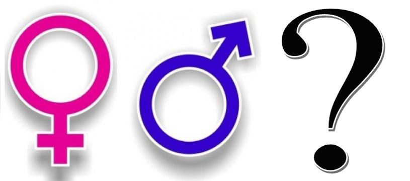 Germania nasce il terzo sesso: sul documento la x indicherà gli ermafroditi