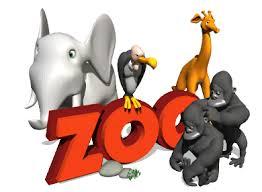 In-uno-zoo-in-Cina-un-cane-al-posto-di-un-leone-a-Fasano-nasce-una-piccola-giraffa
