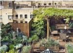 Bari-i-tetti-di-dodici-edifici-saranno-presto-destinati-a-verde-urbano