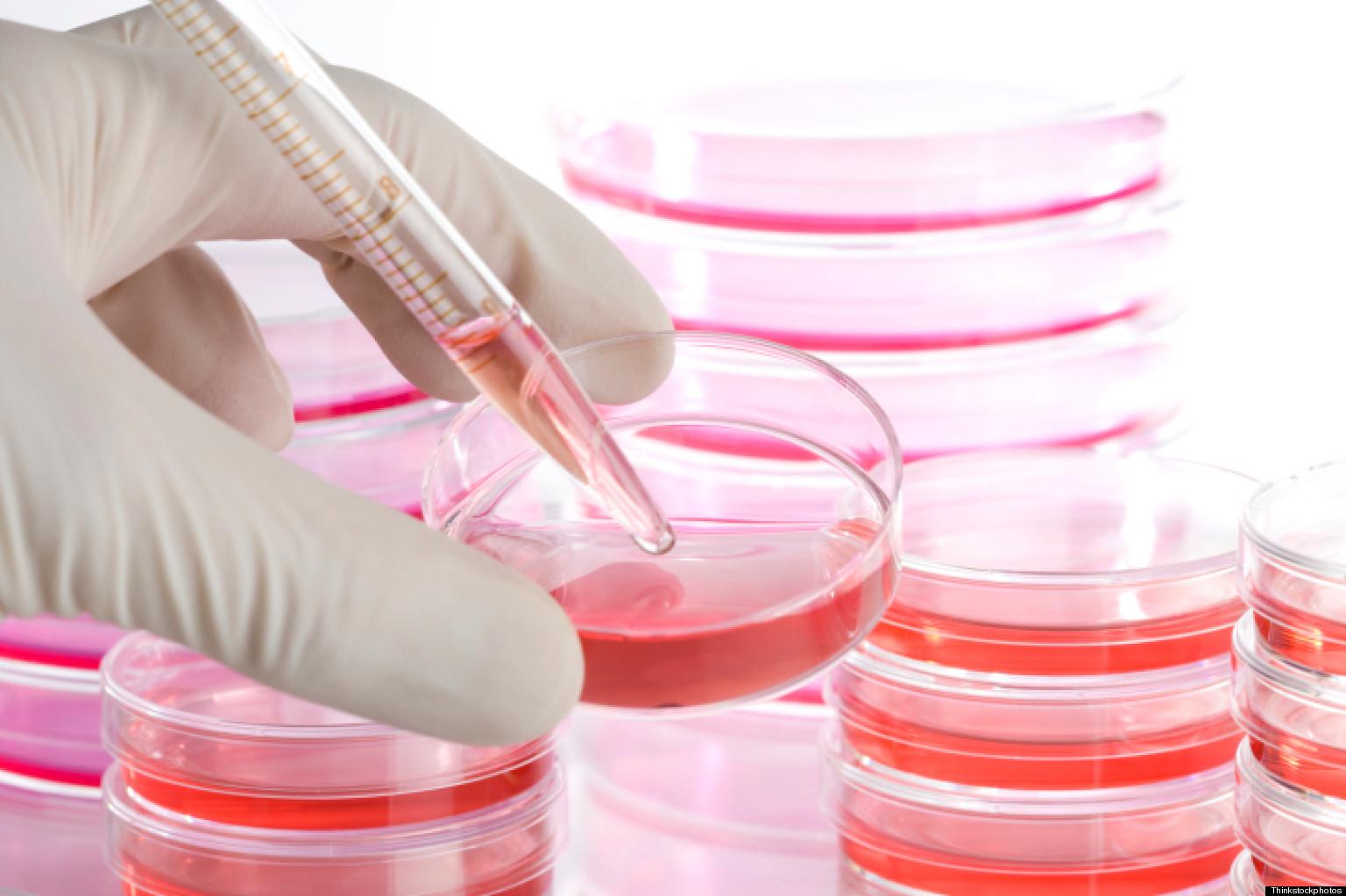 Vaccini anti avaria HIN1, perquisite le sedi della Novartis indagato amministratore delegato