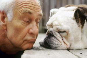 Avere-un-cane-e-prendersene-cura-fa-ringiovanire-di-dieci-anni