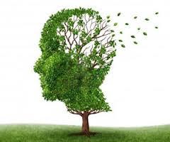 Alzheimer la ricerca scopre quando si spegne il cervello e inizia la malattia