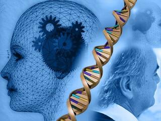 Team di ricerca italiano scopre l'origine dell'Alzheimer