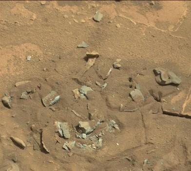 Marte-foto-di-Curiosity-immortala-resti-di-ossa-alieni-la-Nasa-non-conferma