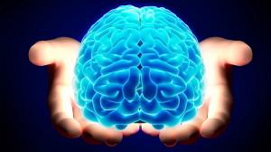 """Gruppo-di-ricercatori-crea-il-""""mini-cervello""""-3D-tra-questi-un-italiano"""