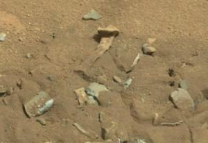 Marte-resti-di-tibia-e-femore-fotografati-da-Curiosity-freme-comunità-scientifica