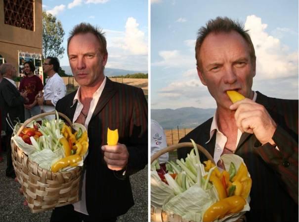 Sting chiede 262 euro a persona per raccogliere olive e zappare nella sua tenuta