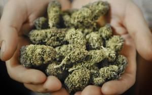 Marijuana-l-uso-continuativo-può-provocare-schizofrenia-e-ansia