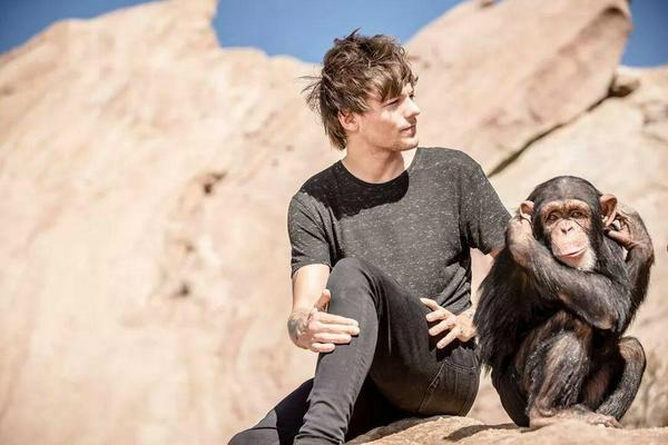 """One Direction ira animalisti per ultimo video """"Steal My Girl"""""""