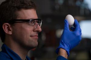 Uovo-sodo-può-tornare-ad-essere-liquido-importante-scoperta-contro-il-cancro