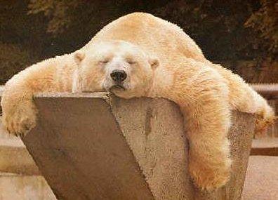 Trenta minuti di riposo per recuperare una notte insonne