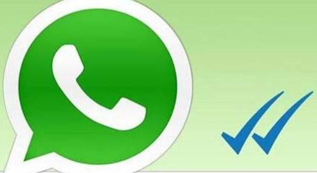 Whatsapp chiamate vocali possibili solo per alcuni utenti