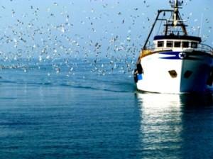 Gambia-scarcerato-Liberati-Massimo-uno-dei-due-pescatori-arrestati