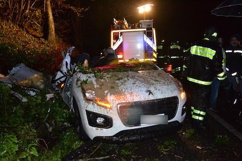 Velletri cade grossa quercia su auto, muore conducente