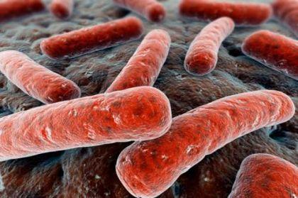 Londra allarme per batteri resistenti antibiotici, rischio 80 mila decessi