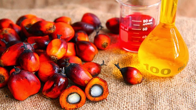 Olio-di-palma-ricco-di-grassi-è-una-delle-cause-del-diabete