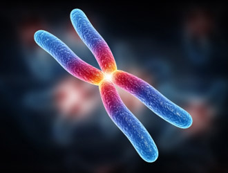 Scoperto-come-i-tumori-riescono-a-resistere-ai-farmaci
