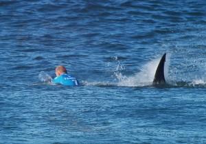 Sudafrica-choc-surfista-attaccato-da-squalo-durante-gara
