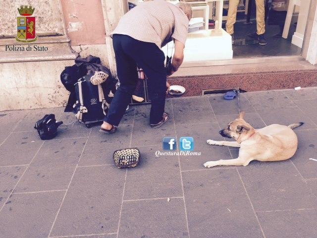 Roma-cani-maltrattati-denunciati-due-mendicanti-nomadi