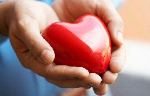 Usa, scoperta proteina che ripara cuore dopo infarto