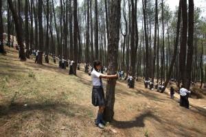 Giornata-nazionale-degli-alberi-proteggere-il-verde-contro-il-riscaldamento globale