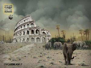 Wwf-nel-futuro-Roma-e-Milano-deserte-e-abitate-solo-da-animali-selvaggi