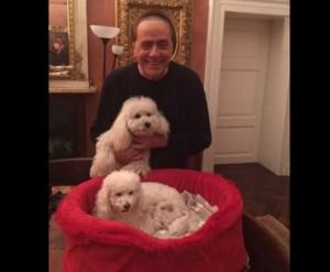 La-felicità-di-Berlusconi-e-la-De-Pascale-Dudù-è-diventato-papà