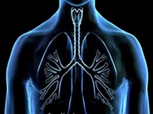 Malattie-respiratorie-colpiti-7-milioni-di-italiani-ma-uno-su-tre-non-si-cura