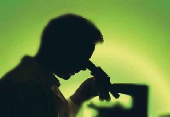 Influenza-suina-arriva-dalla-Cina-spaventa-il-mondo-possibile-pandemia