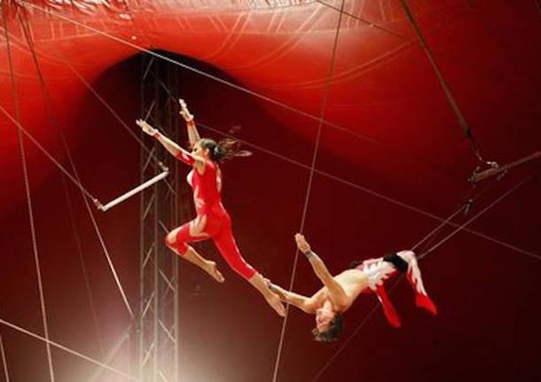 Saronno-trapezista-del-circo-precipita-nel-vuoto-durante-spettacolo