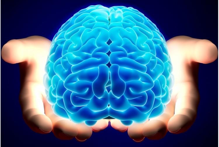 Glioblastoma, scoperto da ricercatori italiani il meccanismo di crescita del cancro al cervello