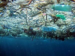 Inquinamento-nel-2050-nei-mari-ci-sarà-più-plastica-che-pesci