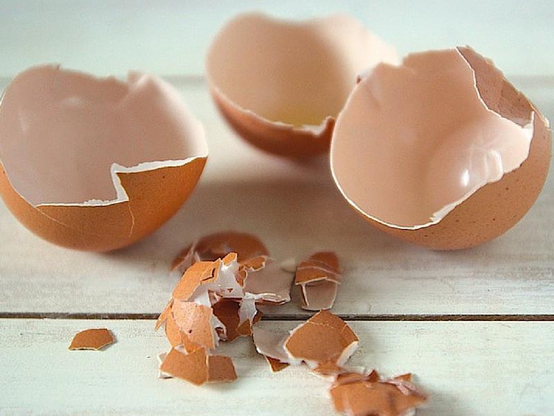 Dai-gusci-delle-uova-si-può-ricavare-plastica-biologica-per-imballaggi
