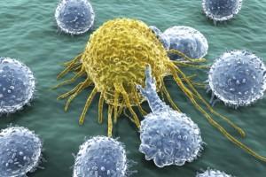 Studio, il tumore influenza altri organi alterandone il metabolismo