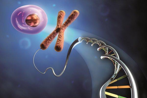 Salute-i-geni-della-felicità-sono-stati-finalmente-scoperti
