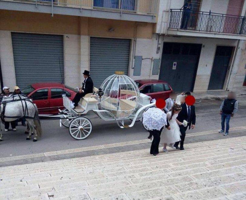Altamura bambina in carrozza con cavalli per la prima comunione, le dure critiche di Selvaggia Lucarelli
