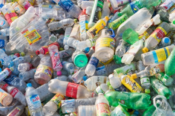 Birra, ideato imballaggio ecosostenibile che si degrada e diventa cibo per pesci