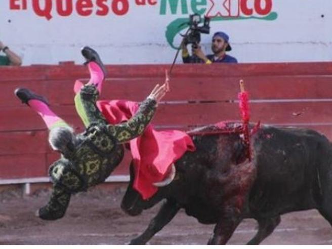 Messico-torero-famoso-per-il-sigaro-incornato-dal-toro-resterà-tetraplegico
