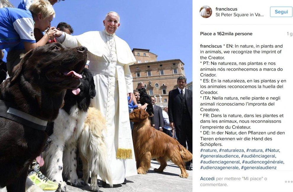Papa Francesco benedice i cani bagnino di Bari. Gli angeli salva vite di Pane e Pomodoro