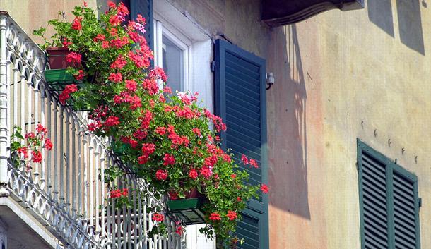©FotoFrosio2001 09052001 Savona balcone fiorito fiori gerani