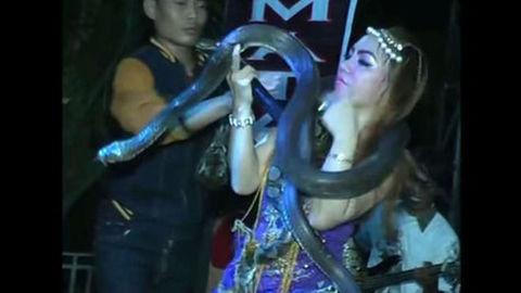 Ballerina fa un numero con i serpenti, viene morsa, continua a ballare e poi muore