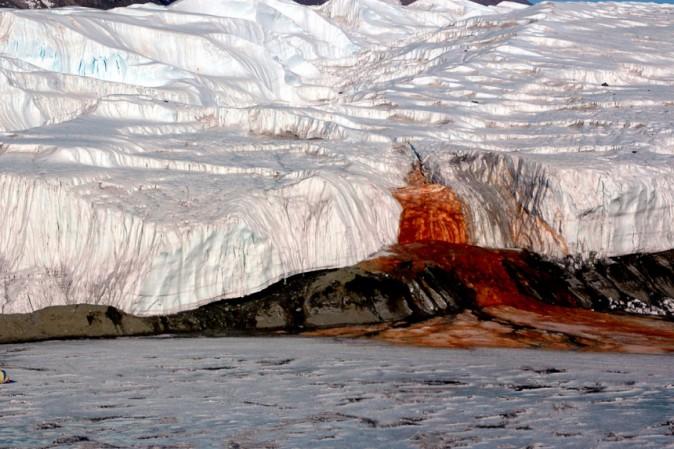 Cascate di Sangue in Antartide, cosa succede? Dopo 106 anni il mistero è stato finalmente risolto