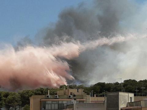 Puglia, inferno intorno all'ospedale rischio di evacuazione, il sindaco incendio doloso