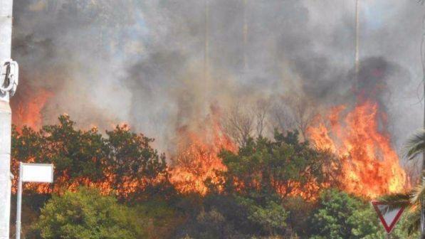 Devastante incendio sul litorale, evacuato campeggio, villeggianti in fuga