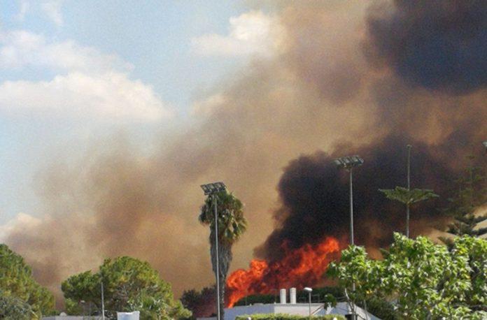 Puglia, incendio tra le ville fatte evacuare dai pompieri, turisti in fuga sulla costa