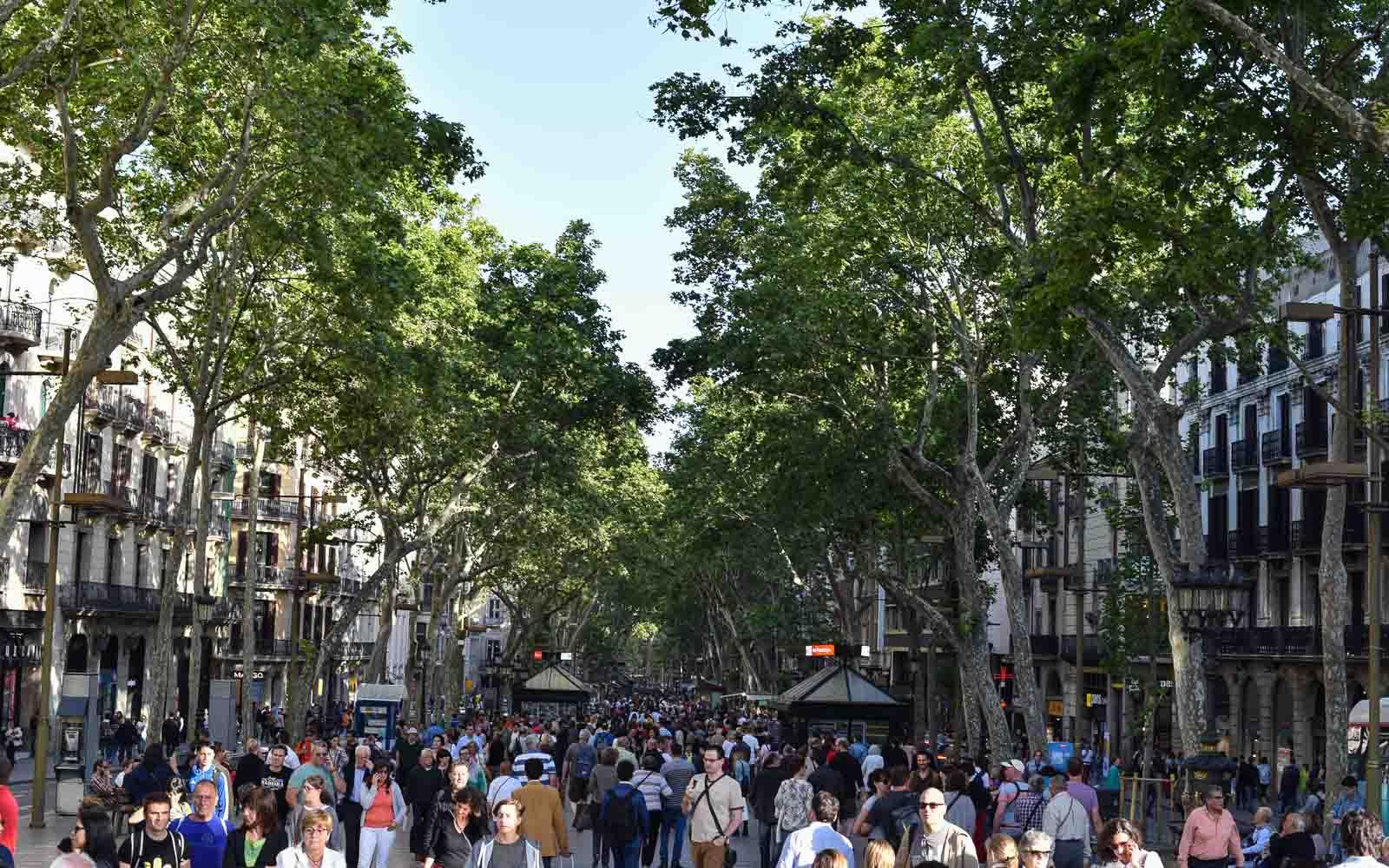 Barcellona ultimi aggiornamenti furgone sulla Rambla travolge folla di turisti, sono 3 i morti e 20 i feriti
