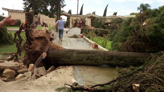 Puglia, spaventosa tromba d'aria semina panico in città, abbattuti alberi, divelti cancelli e tetti di capannoni industriali