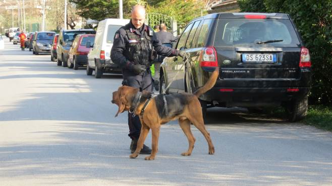 Puglia, giorni di angoscia per la scomparsa della 16enne Noemi Durini, al setaccio tutto il territorio, in azione anche i cani molecolari
